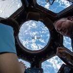 Ferl-ISS-plantsinspace