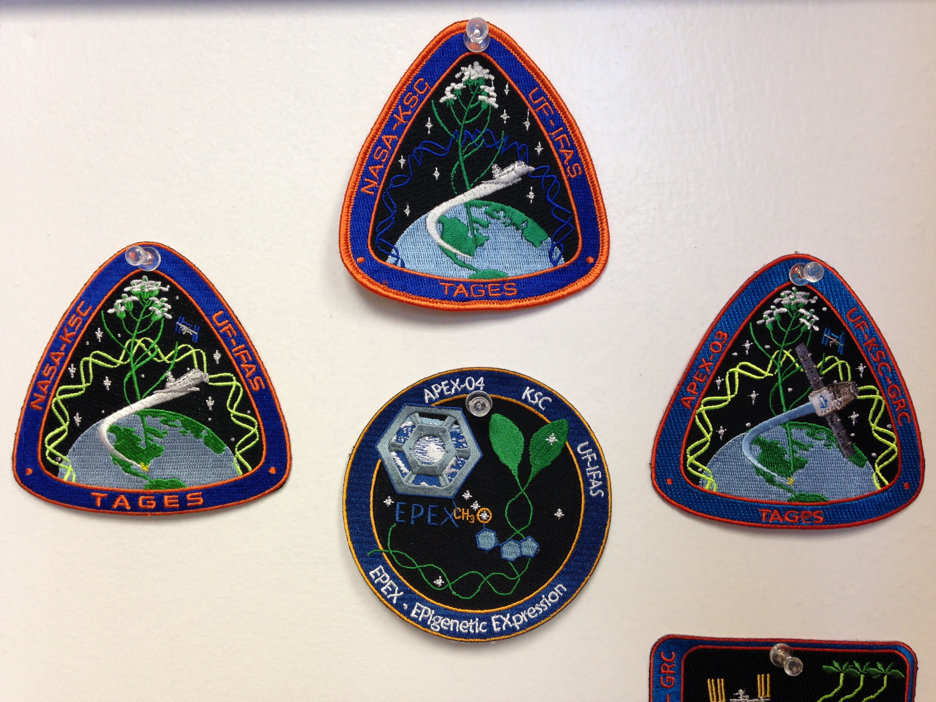 Patches from various missions Ferl and Paul's experiments have flown.